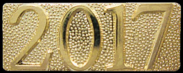 2017 CHENILLE PIN