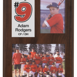 PHOTO SLIDE IN PLAQUE-HOLDS 3 1/2x5 AND 5X7 PHOTO