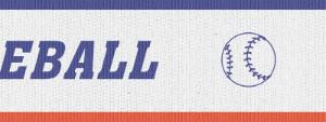 BASEBALL NECK RIBBON WITH SNAP CLIP